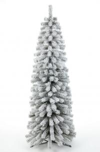 Frosty Thuya Christmas Tree