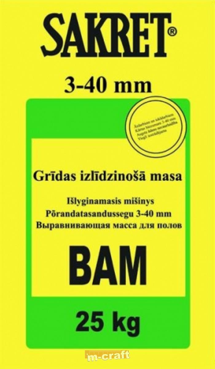 bam2 essay