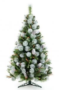 Frosty Julie christmas tree with cones